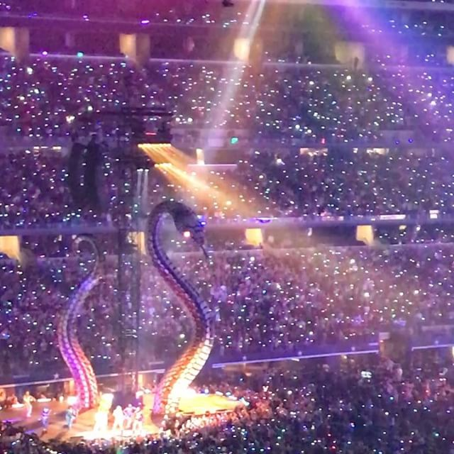 Caleigh's first concert was a success! 💥🎶💕#taylorswiftreputation 10.5.18 #bestbirthdayever