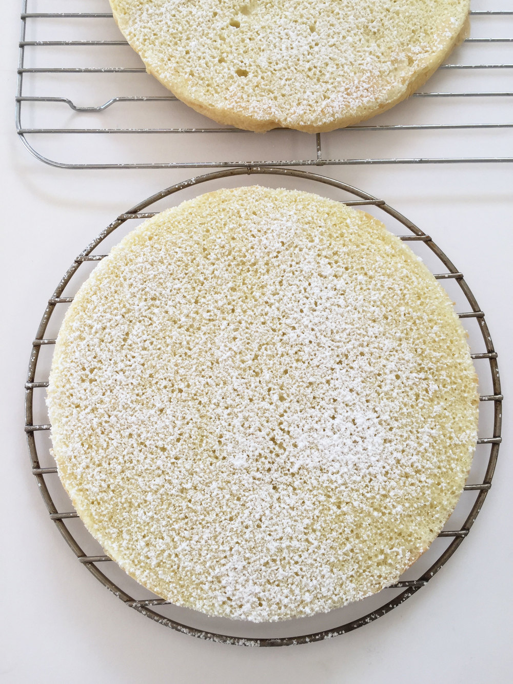 Sponge cake || Tiramisu || Haute in Paradise