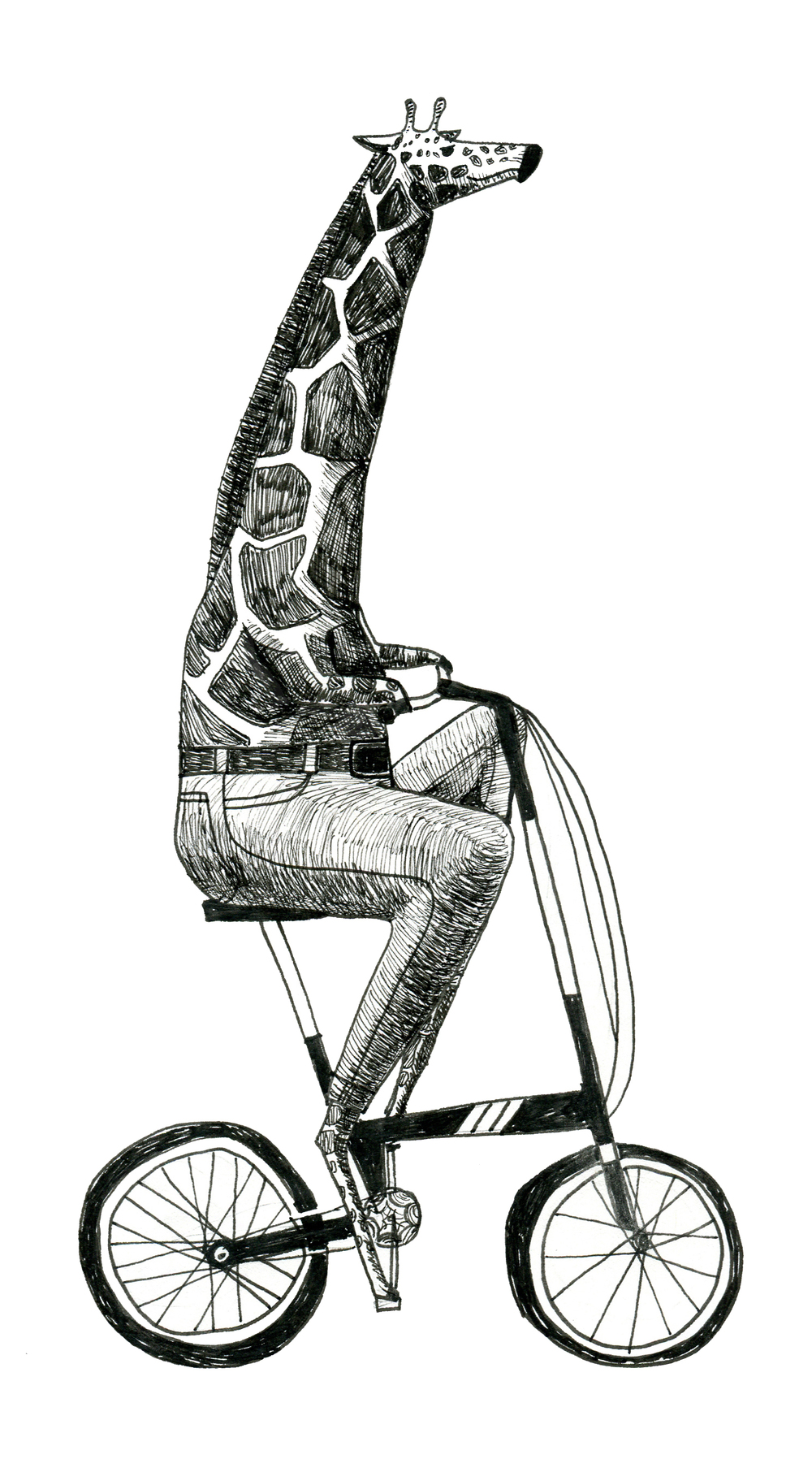 giraffe on a folding bike
