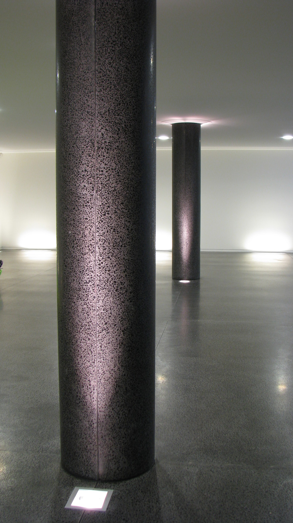 Precast pillars and insitu floor.JPG