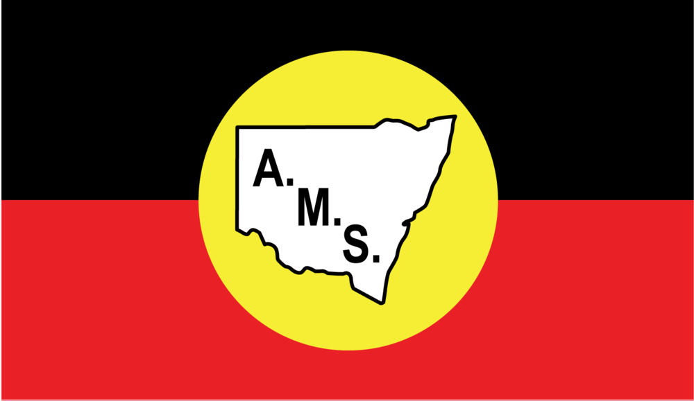 Aboriginal Medical Service Redfern   36 Turner Street Redfern NSW 2016   Phone: 02 9319 5823