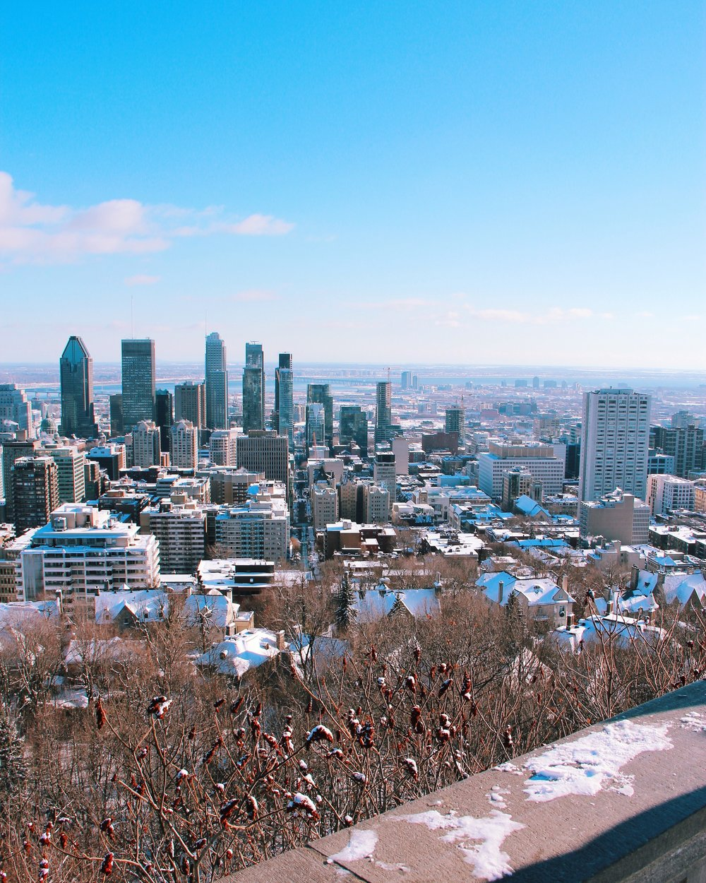 mont-royal-park-montreal
