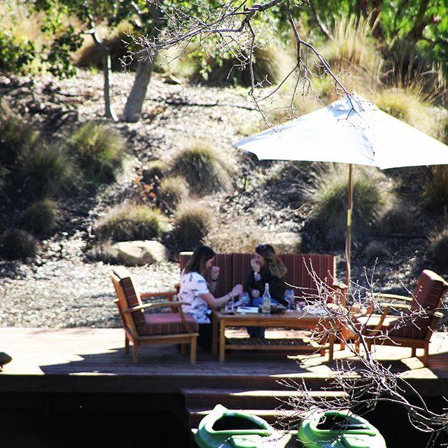 #flashbackfriday to that one time two amazing people got engaged on my #winetour @penceranchwine #love #lovewine #bestofsantabarbara @sbindependent #govotenow #wineenthusiast #santabarbara #santaynez #bestsantabarbarawinetour #savewaterdrinkwine #california