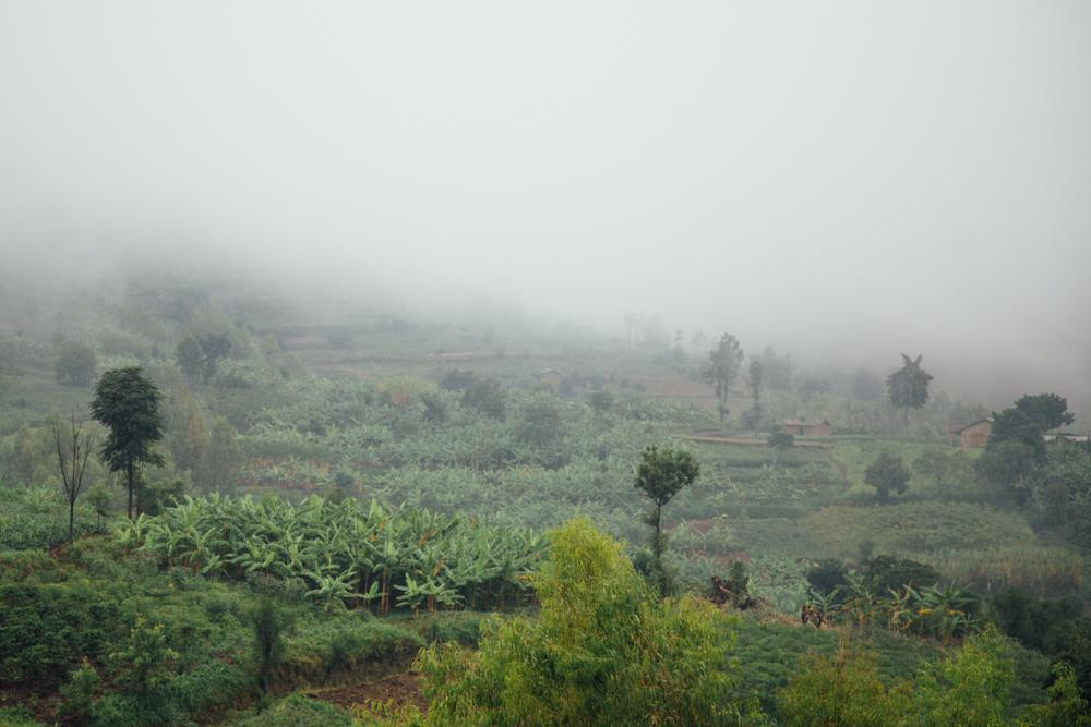 Rwanda Day_DK--Print-101-12.jpg