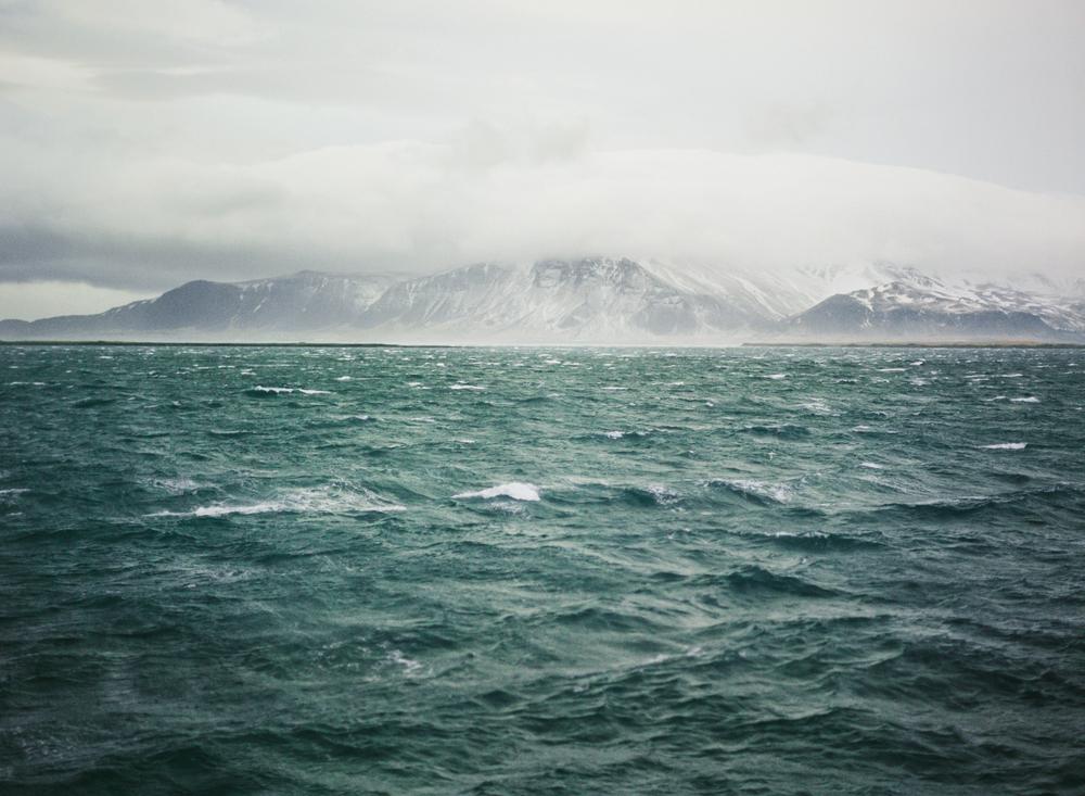 39. John Dale, Reykjavík.jpg