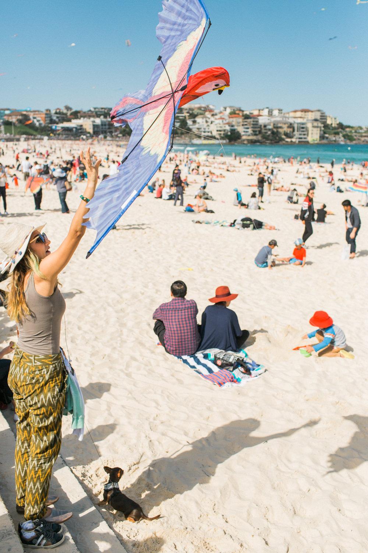 festival-of-the-winds-bondi-beach-sydney-15.jpg