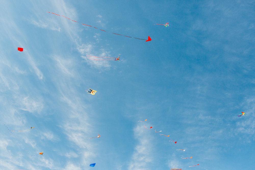 festival-of-the-winds-bondi-beach-sydney-19.jpg
