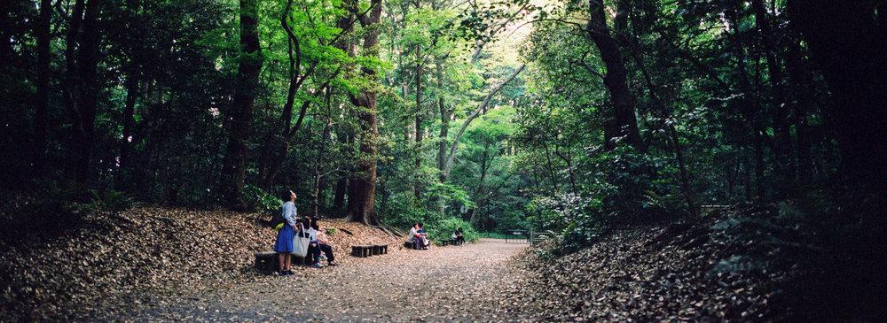 hasselblad-xpan-japan-jason-de-plater-19.jpg