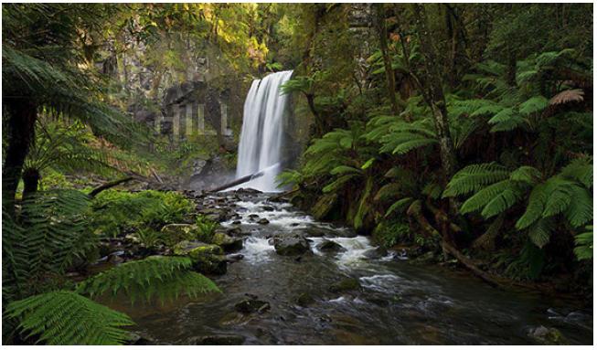Hopetoun Falls... The Otways.
