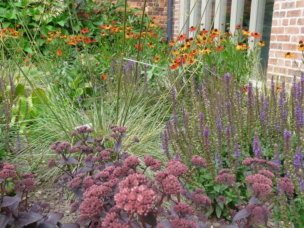 Planting (2) in Lincoln garden.jpg