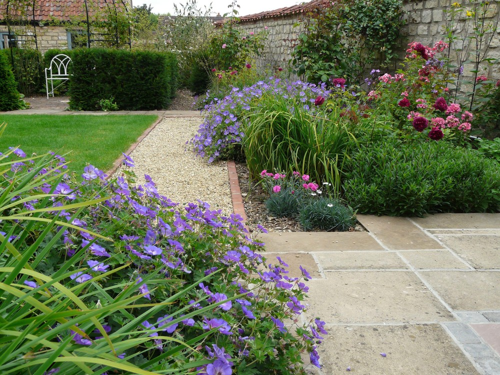 Geranium in Fulbeck garden.jpg