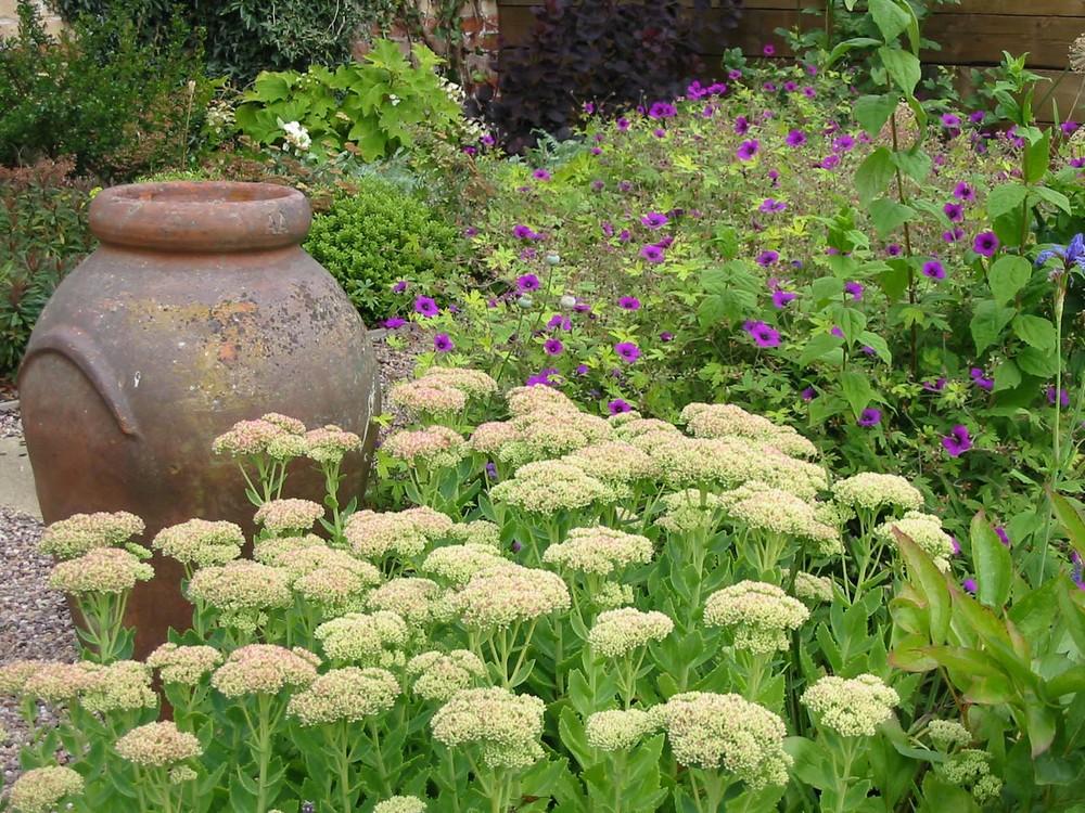 terracotta planter in Lincoln garden.jpg