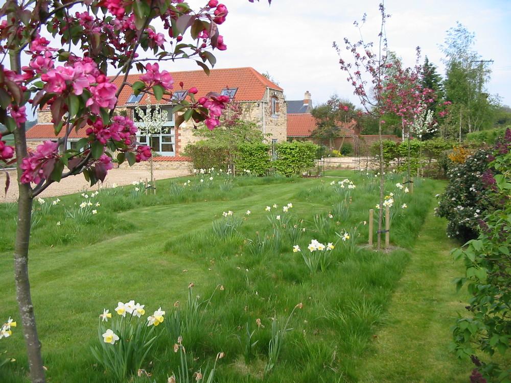 Meadow in Fulbeck garden.JPG