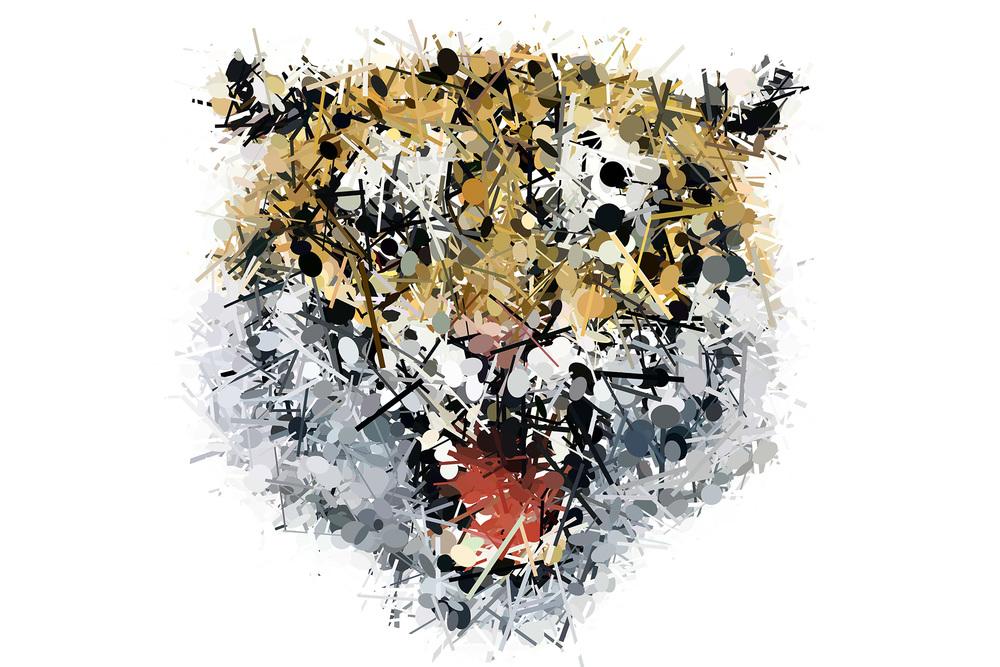 tiger-01-detail.jpg