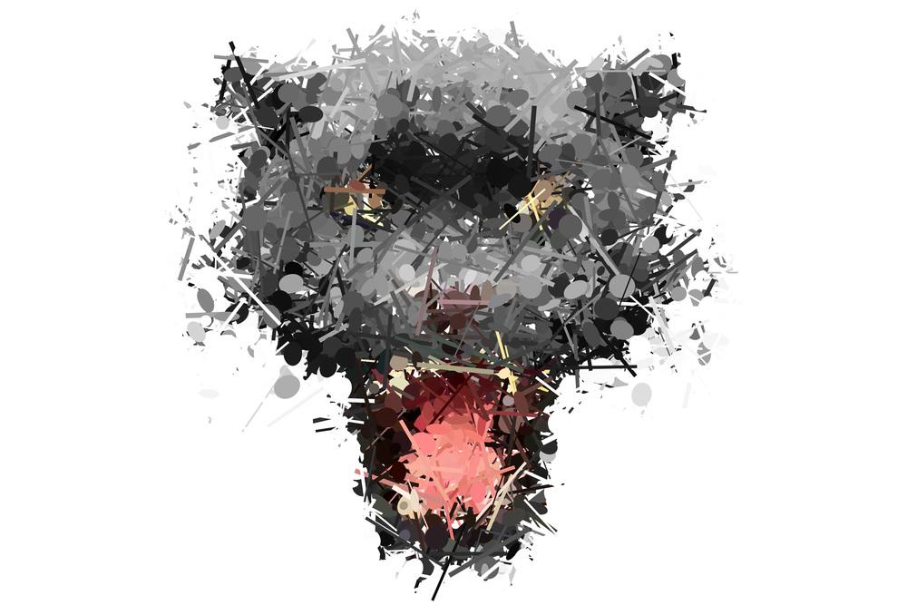 panther-detail.jpg