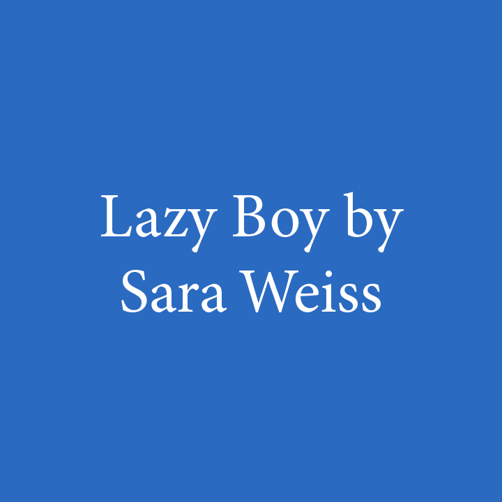 Lazy Boy by Sara Weiss.jpg