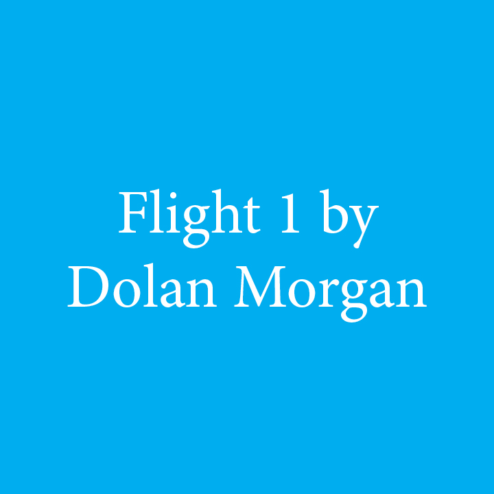 Flight 1 by Dolan Morgan.jpg