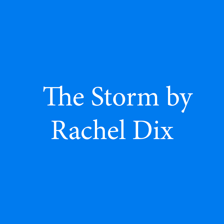 The Storm by Rachel Dix.jpg