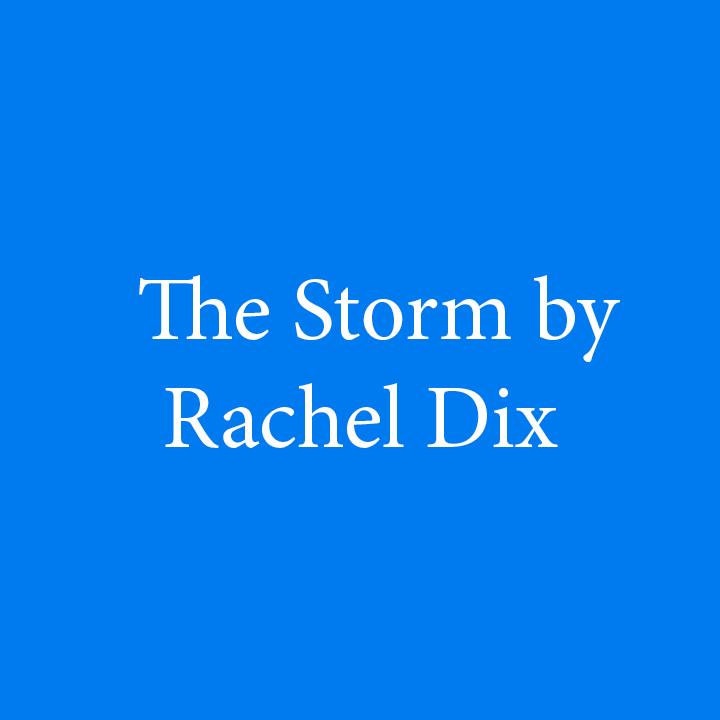 The Storm by Rachel Dix.jpg