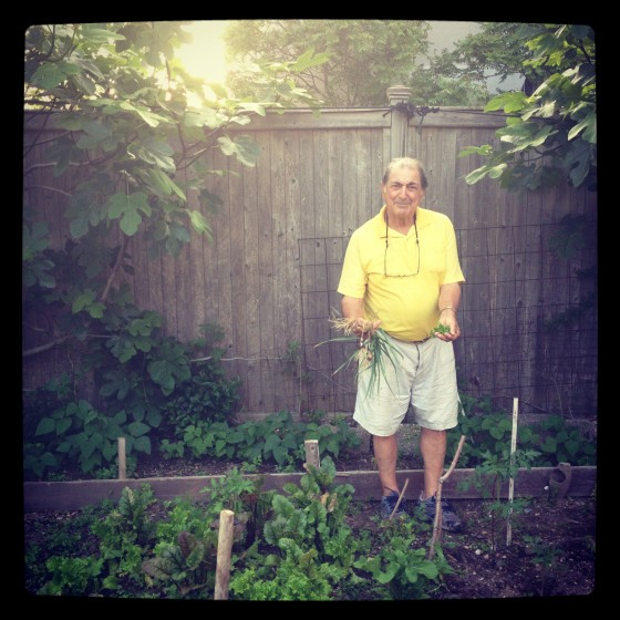 my-father-in-his-kitchen-garden-a-few-months-before-Sandy-560x560.jpg