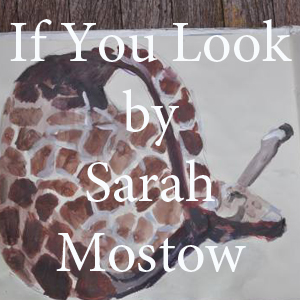 Sarah Mostow If You Look.jpg