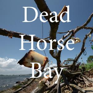 Dead Horse Bay pc Nate Dorr.jpg