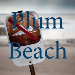 Plum Beach pc Adrian Kinloch.jpg