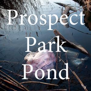 Prospect Park Pond pc Adrian Kinloch.jpg
