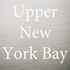 upper new york bay.jpg
