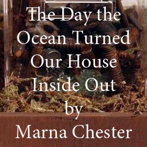 Marna Chester.jpg