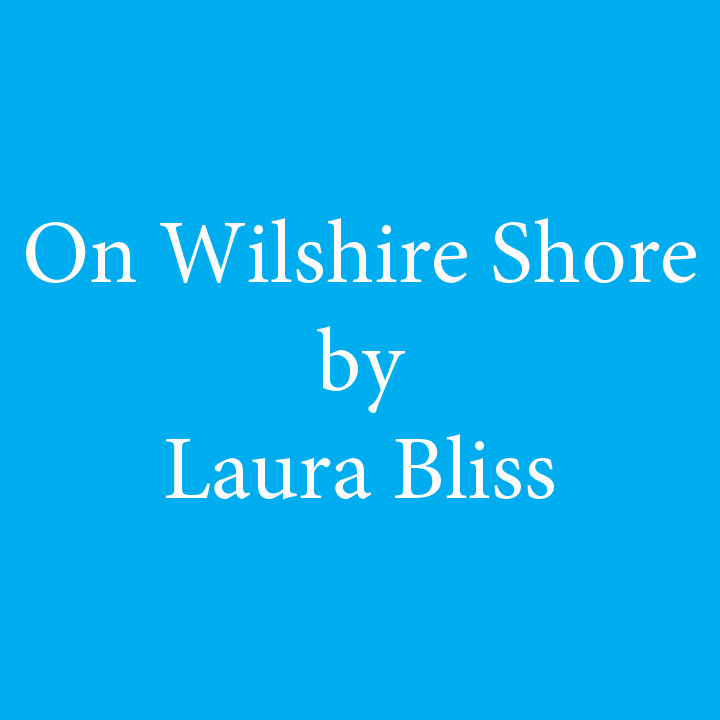 on wilshire shore by laura bliss.jpg