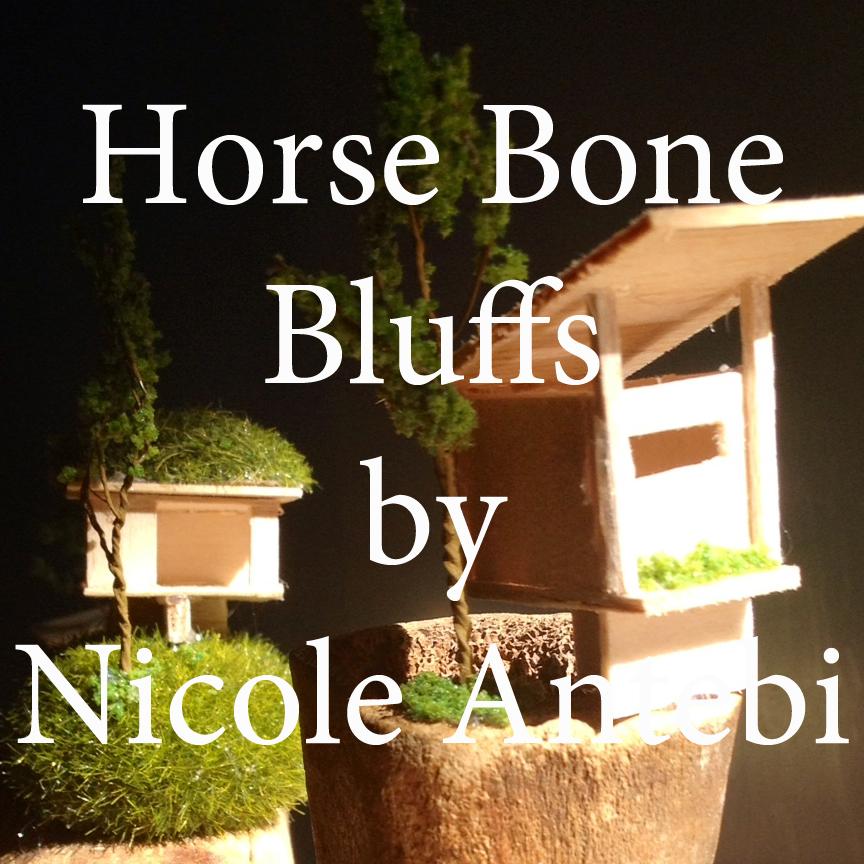 Horse Bone Bluff_Antebi.jpg