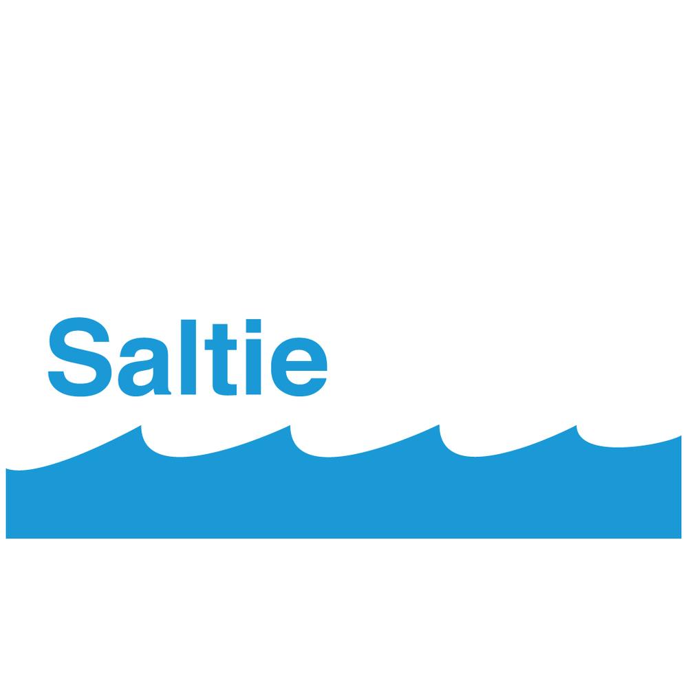 saltie square.jpg