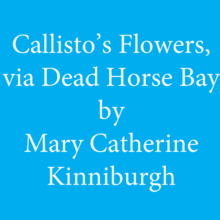 Callistos Flowers by Mary Catherine Kinniburgh.jpg