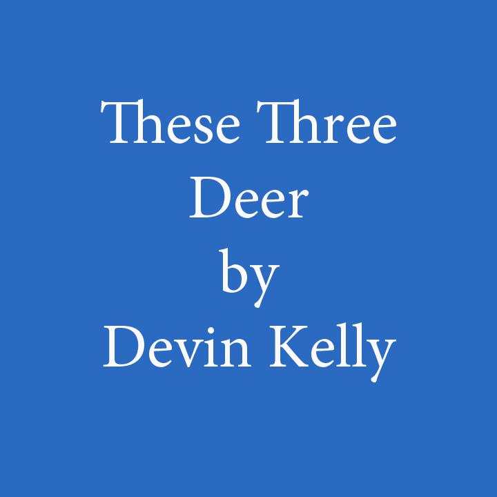 these three deer by devin kelly.jpg