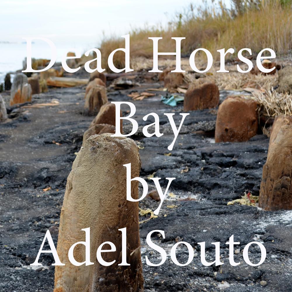 Dead Horse Bay by Adel Souto.jpg