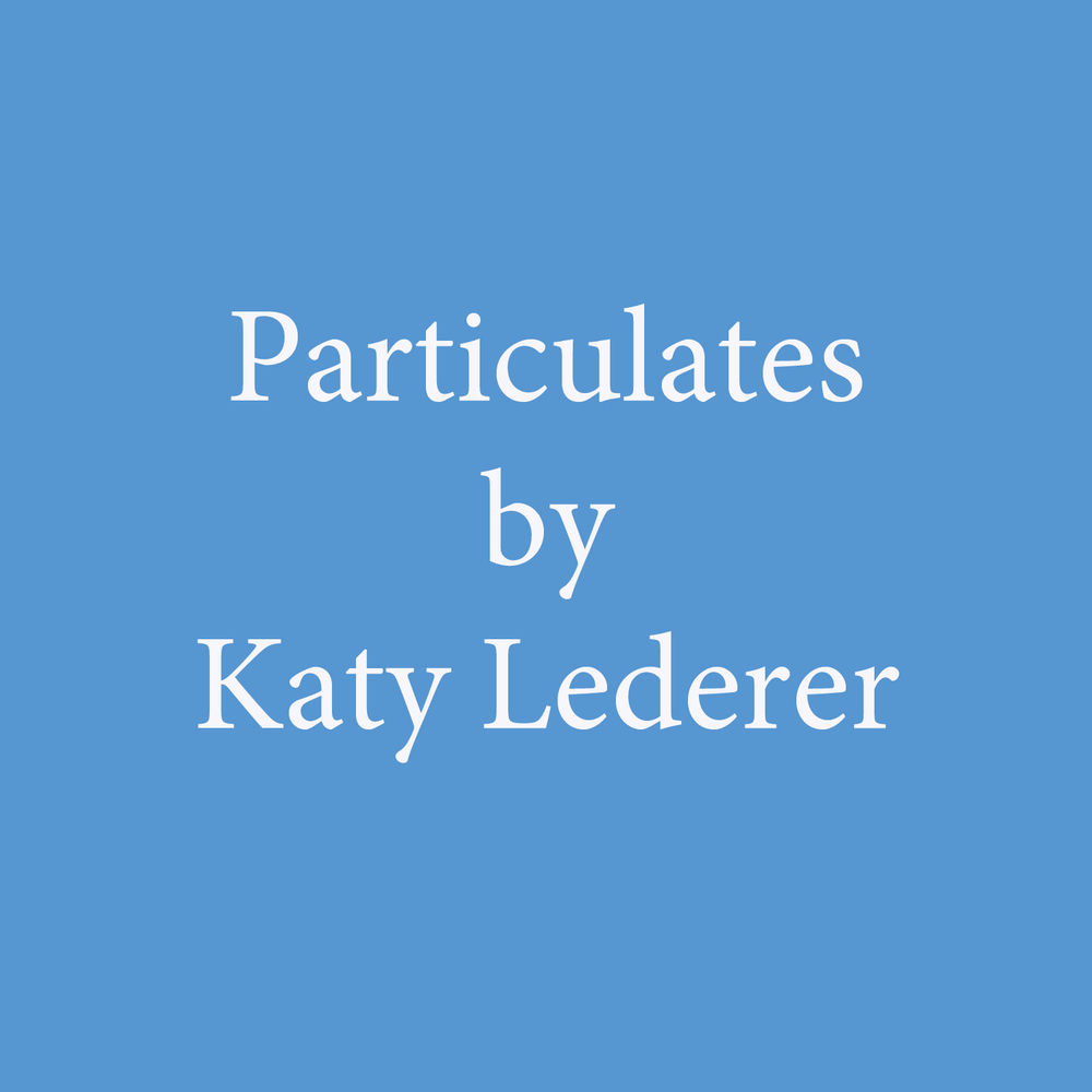 particulates by katy lederer.jpg