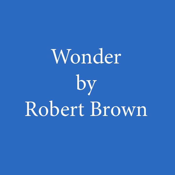 Wonder by Robert Brown.jpg