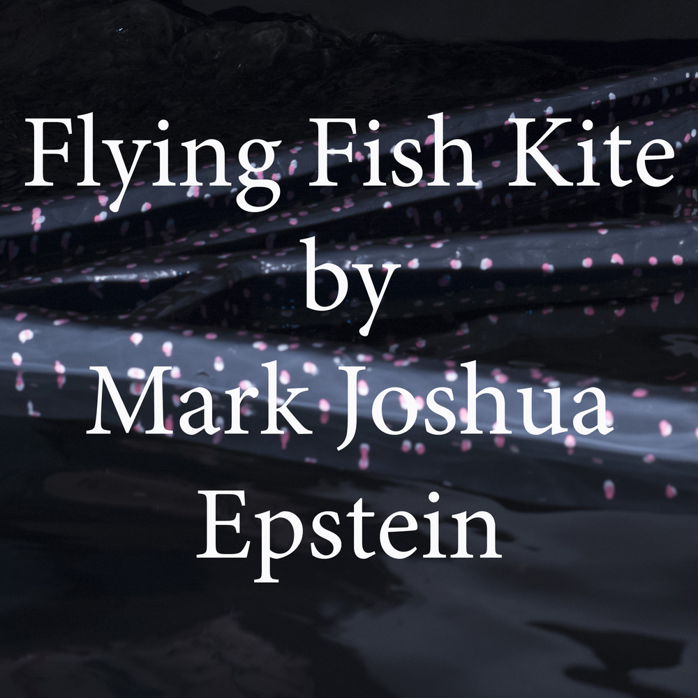 flying fish kite by mark joshua epstein.jpg