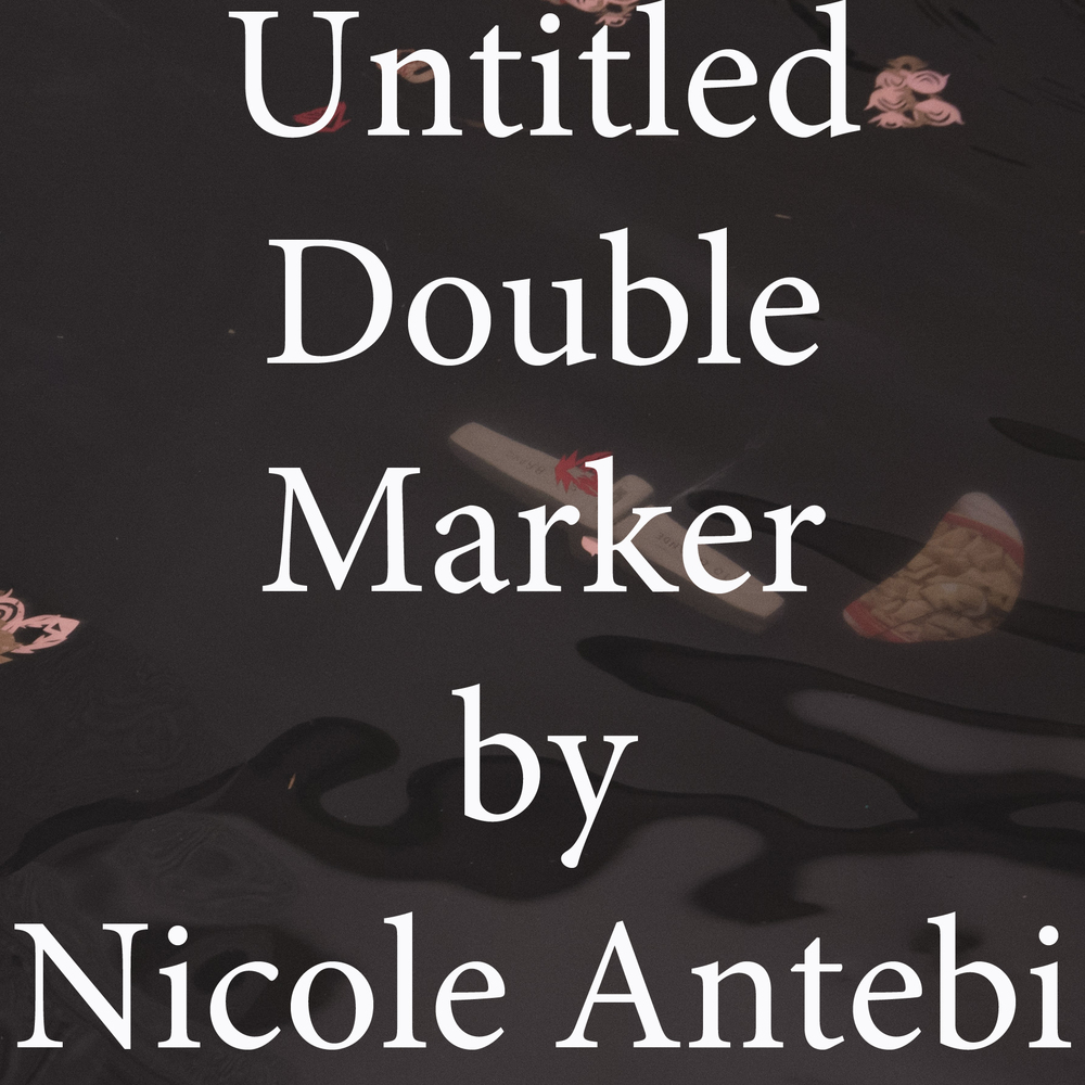 untitled double marker by nicole antebi.jpg