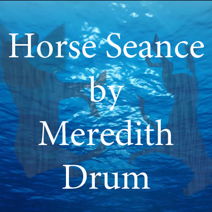 Horse Seance by Meredith Drum.jpg