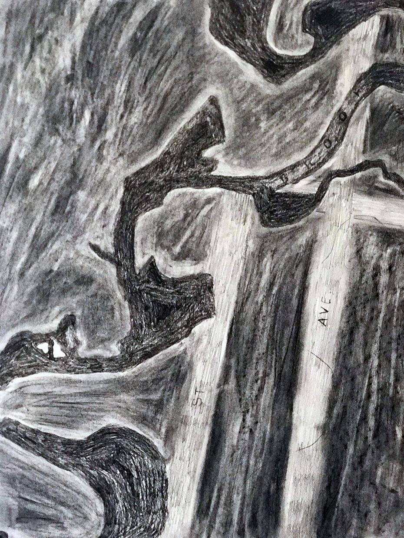 Mosholu #6, 2018, Graphite on Paper, 24 x 18 inches