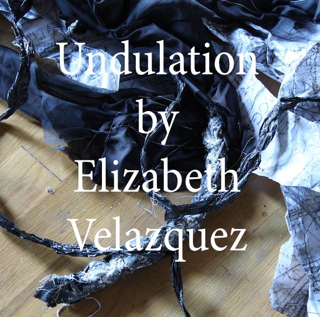 Velazquez Undulation .jpg
