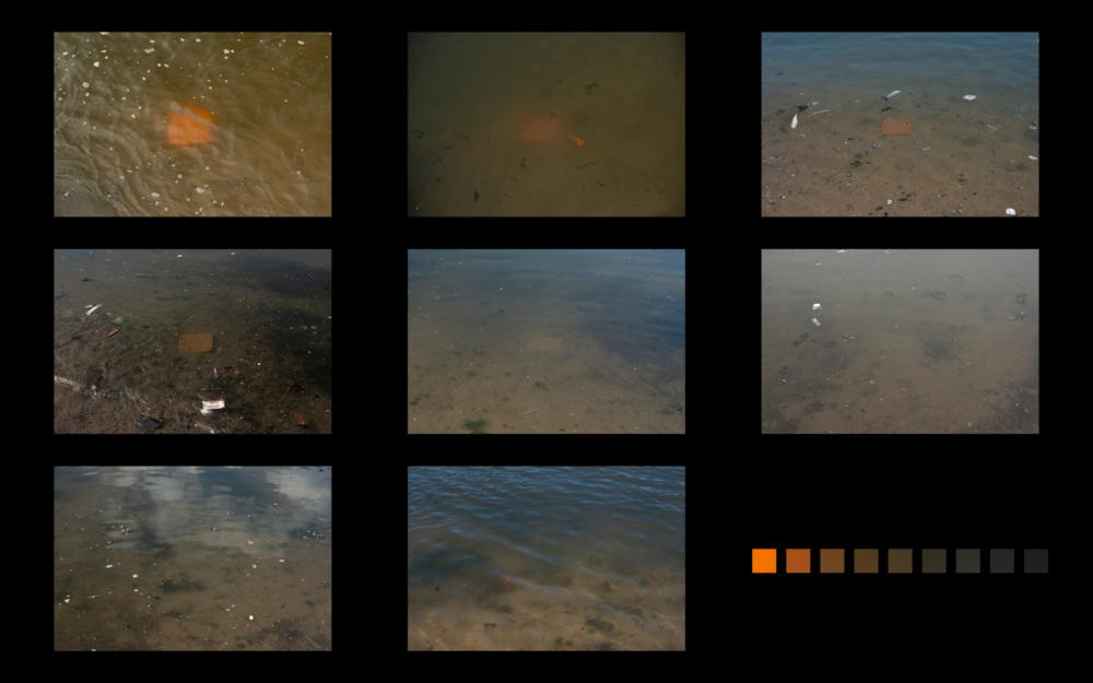 orange,+digital+composite.png