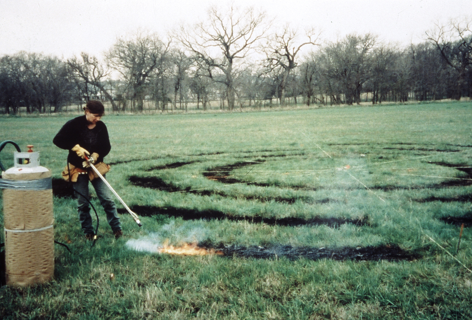 labyrinth 2001 200 ft diameter  burned grass connemara dallas texas