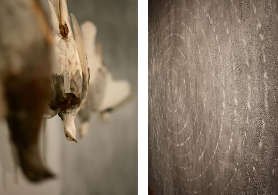 alluvial detail