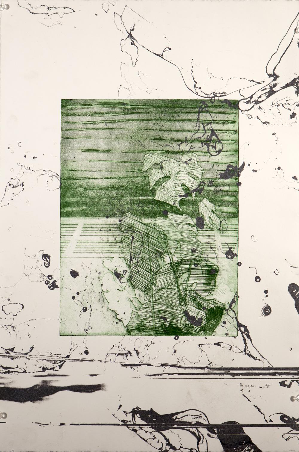 Planterprint 5.24x18.Print on paper.3.13.jpg