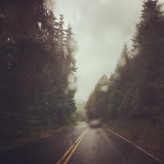 #travel #oregon #backroads #trees #pnw
