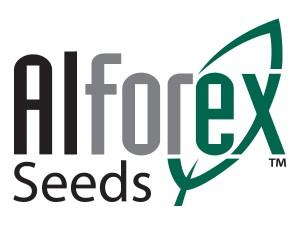 Alforex_logo.jpg