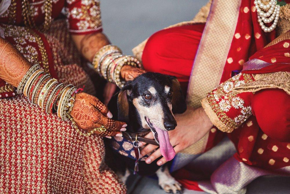 BirminghamAlabama_WeddingPhotographer_0186.jpg